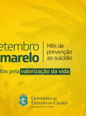 Setembro Amarelo: informação em defesa da vida